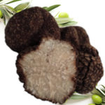 Asiatrüffel - Tuber Indicum